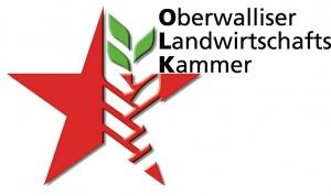 logo OLK